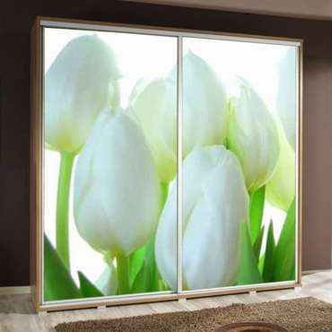 Wardrobe PENELOPA 205 Tulip