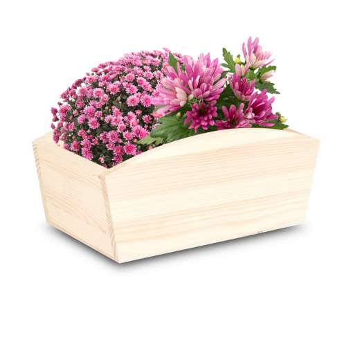 Small Wooden Planter